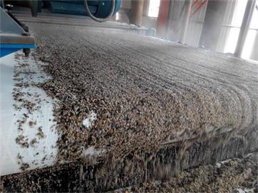 洗砂机现场图